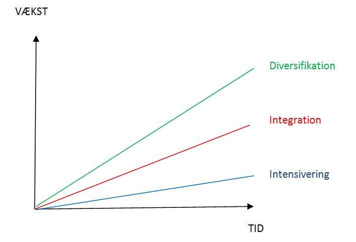 hvad er vækststrategi
